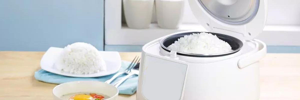 De beste rijstkoker kopen